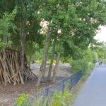 Parco di Gleisdreieck - Berlino